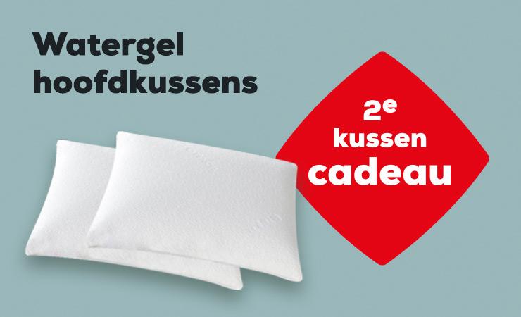 Winter Sale Actie Watergel Hoofdkussen | Swiss Sense