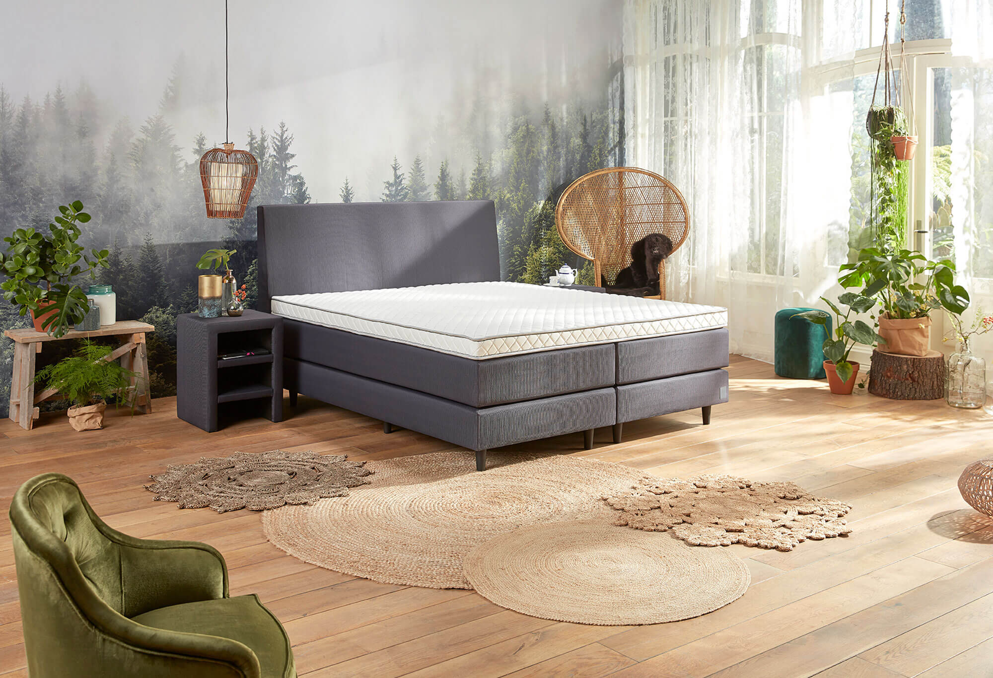 jubileumboxspring edition i swiss sense gratis montage. Black Bedroom Furniture Sets. Home Design Ideas