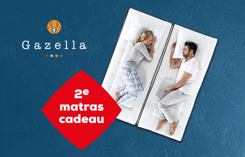 Gazella Advies Banner | Swiss Sense