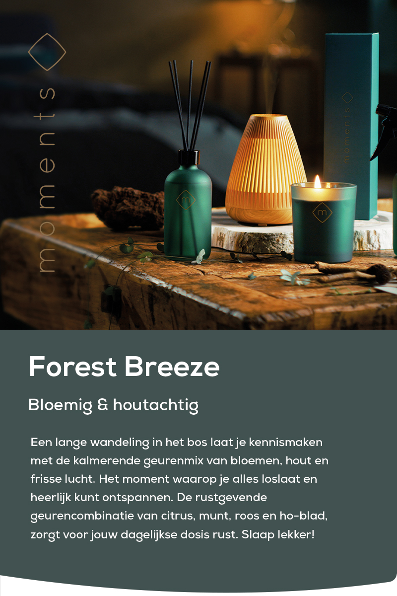 Moments | Forest Breeze